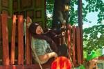 treehouse-sunday-funday_50